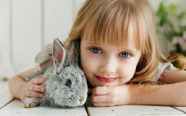 بچه های کوچک و حیوانات خانگی